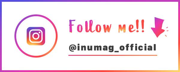 Instagram follow me!